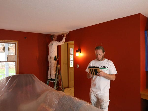 Beginning to paint the walls