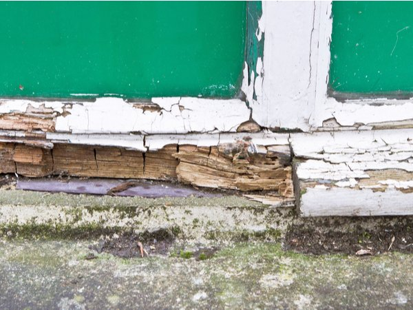 Extensive wood rot on a house
