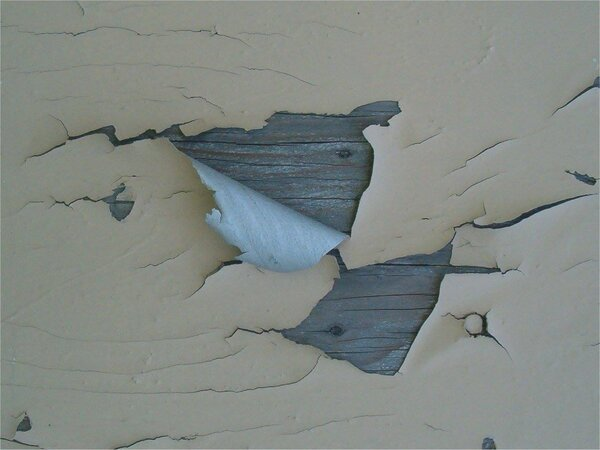 Paint peeling off of a wall that needs scraping